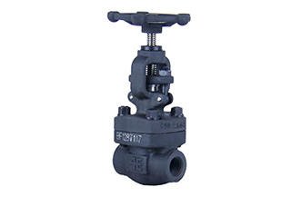 4E 800# A105 Forged Steel Globe Valve