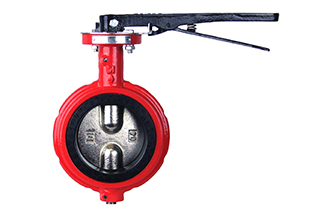 4E 125# IS200 Ductile Iron Wafer Notched Style Butterfly Valve (Industrial)