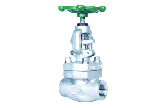 4E 800# Forged Stainless Steel Globe Valve
