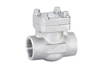 4E 800# Forged Stainless Steel Swing & Piston Check Valve