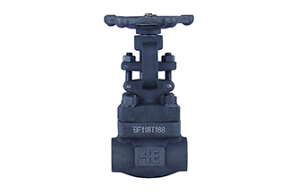 4E 800# A105 Forged Steel Gate Valve